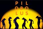 Pilobolus-Shadowland-thumb