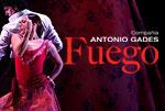 Cia-Antonio-Gades-Fuego-thumb